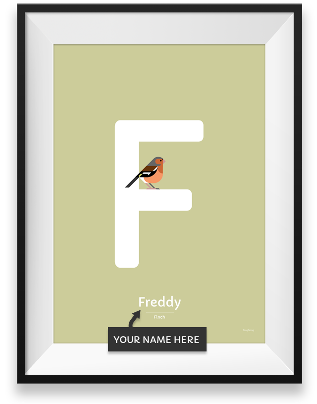 Finch personalized print