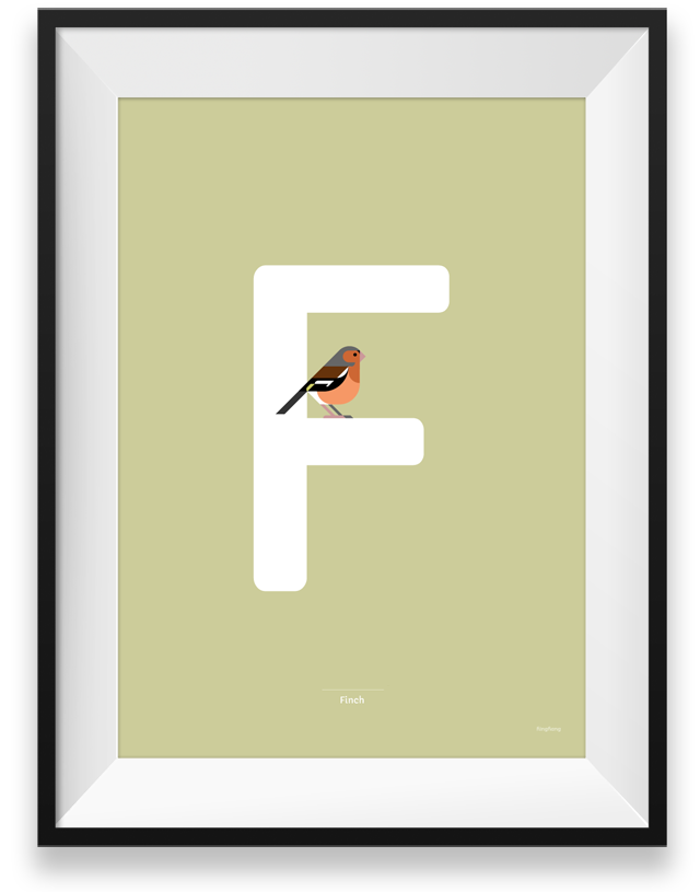 Finch graphic design poster