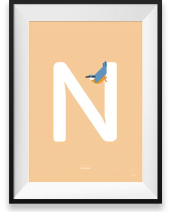 Nuthatch vector print