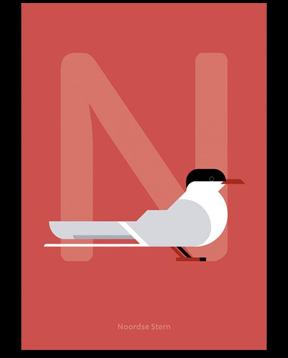 Noordse stern poster