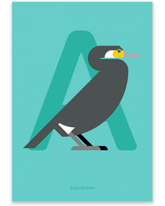 Aalscholver poster