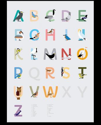 Nederlands Vogel alfabet print