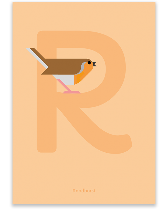 Roodborst poster