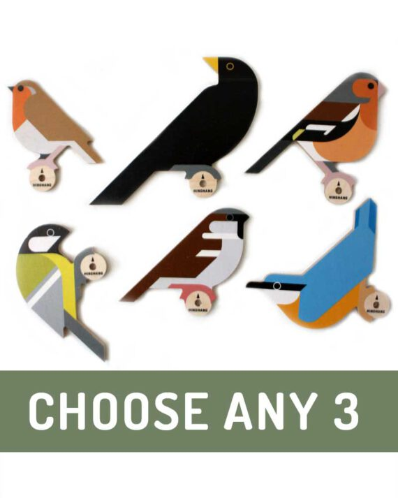 Choose any 3 bird wall hooks